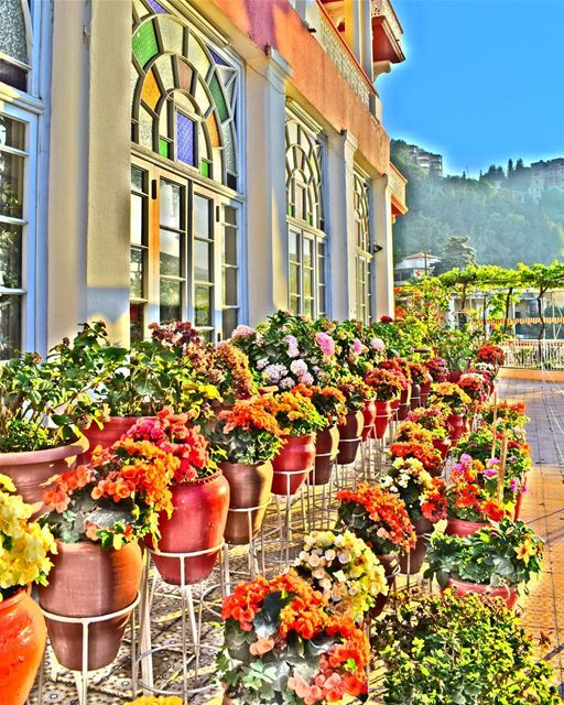 A colorful morning from Syr 💚💚💚 | Join me on Facebook for more pictures... (Syr Palace Hotel)