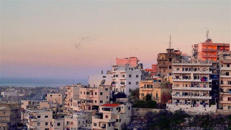 The Tripolitan Cinqueterre 😍 Lebanon Lebanese Tripoli city ... (Tripoli, Lebanon)