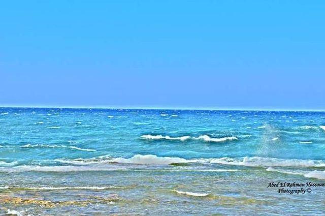 قالوا عن البحر غدار...قالوا يخفي أسرار...قالوا أناني وجبار... قالوا وقالوا (طرابلس - الميناء)
