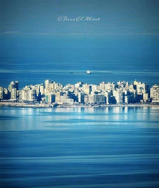 انعكاس الحياة على الحياة نفسها...___ sealife sea seaview peace calm ... (الميناء)