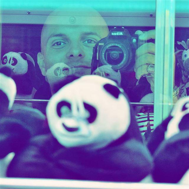 With the pandas 🐼🐼🐼 Portrait Selfie by Nikon Myself Me I... (CosmoCity)