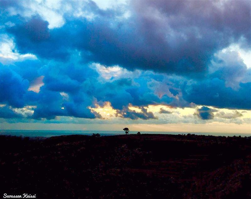 sunset colors clouds blue tree landscape ...