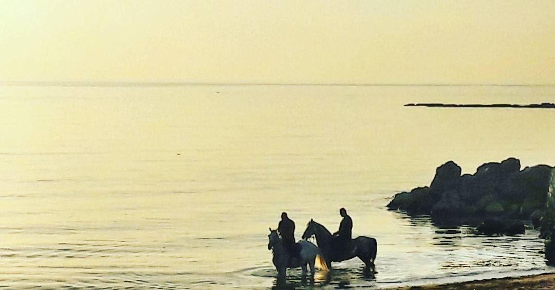 Live Love Relax 😌 Tripoli TripoliLB Love CalmDown Lebanon Lebanese... (Tripoli, Lebanon)