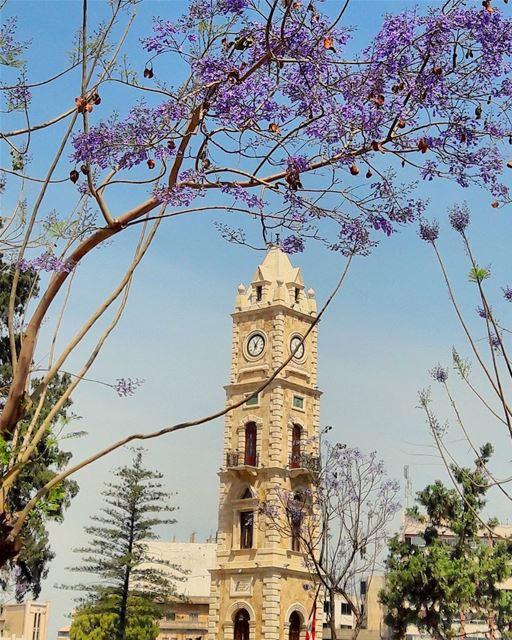 😍😍😍 ComeToTripoli ILoveTripoli TripoliLB instaTripoli ... (Tripoli Al Tal)