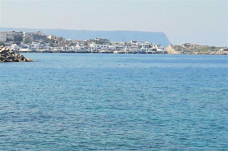 Good morning Anfeh fisherman Koura Lebanon Lebanese Mediterranean ... (Anfeh - Koura)