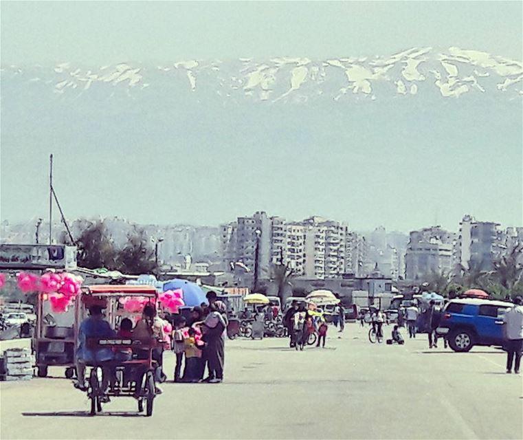 Amazing view 💕 Tripoli TripoliLB Lebanon Lebanese Mediterranean ... (طرابلس - الميناء)