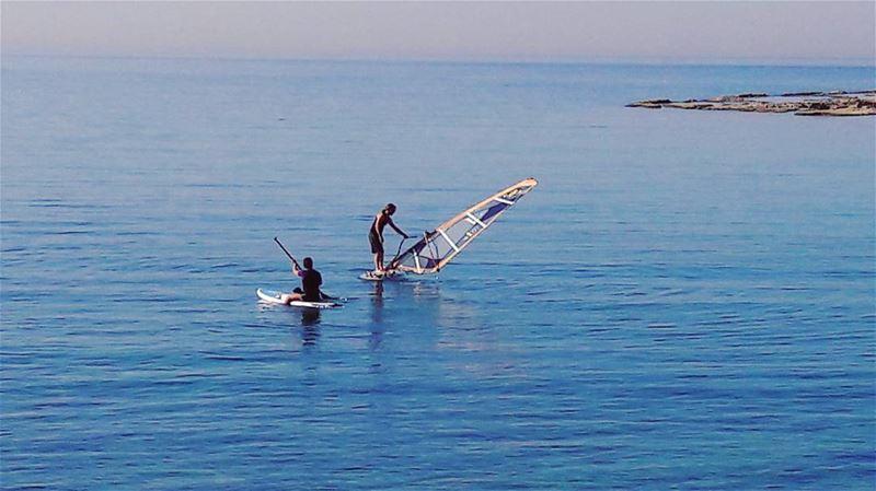 They are taking vitamin SEA 🌊🌊🌊 Batroun Lebanon Lebanese ... (CNRS- National Center for Marine Sciences)