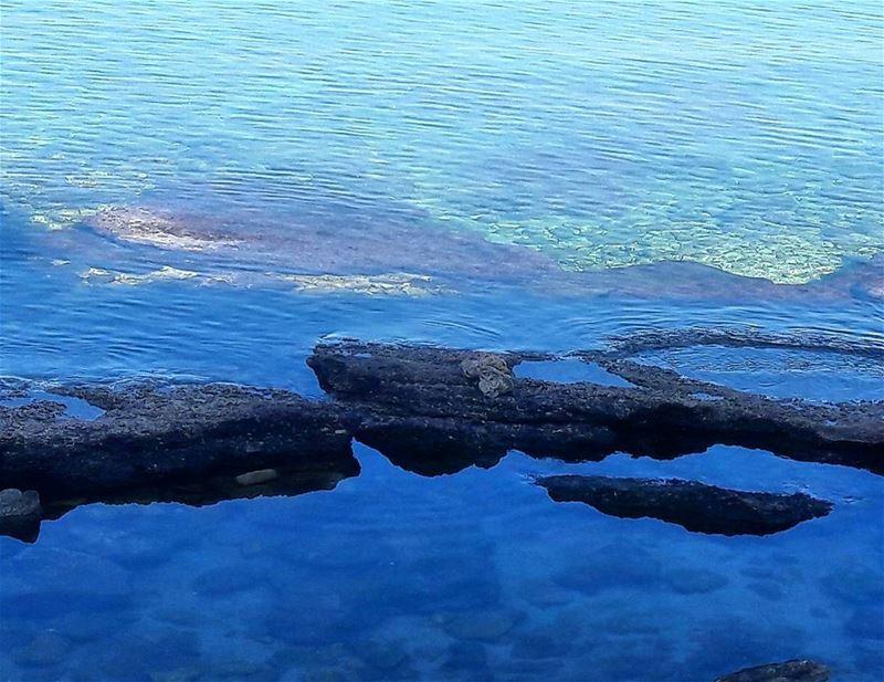 Calm sea Batroun liban ig_lebanon WhatsUpLebanon ilovelebanon ... (Batroun Beach)