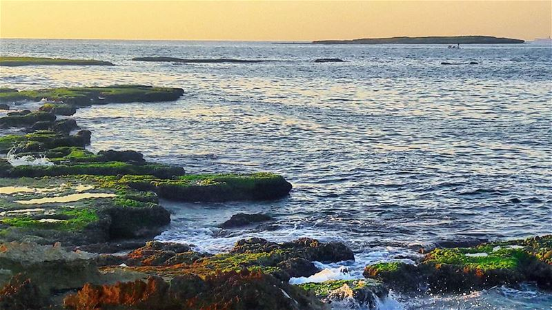 I always need vitamin SEA 🌊 Tripoli TripoliLB liban islands Rocks ... (طرابلس - الميناء)