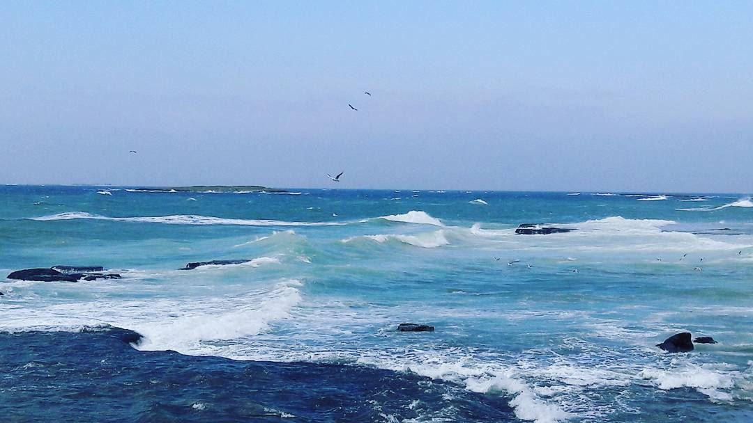 Sometimes you just have to go with the waves.... طرابلس لبنان... (Tripoli, Lebanon)