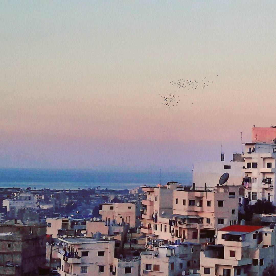 Tripoli HappyNewYear HappyNewYear2016 Winter ILoveTripoli TripoliLB... (Tripoli, Lebanon)