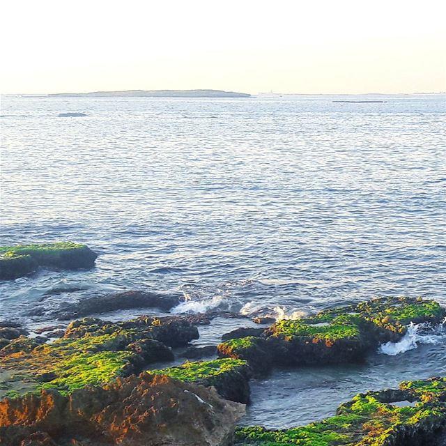 Tripoli TripoliLB liban island Rocks ig_lebanon WhatsUpLebanon ... (جزيرة عبد الوهاب)