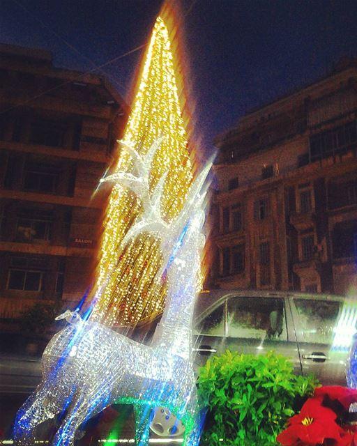Christmas fever everywhere :) TripoliLB livelovedecember ...