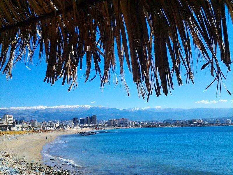 3 S in one Tripolitan picture:Sea, Snow & Sun....Live Love Tripoli طرابل