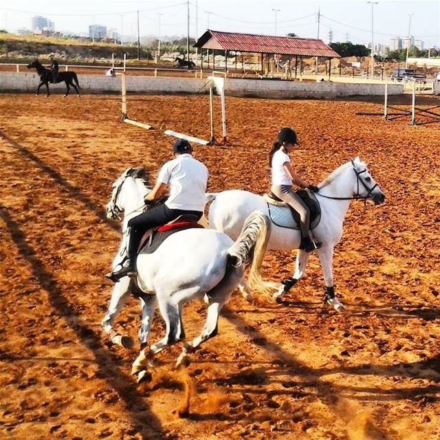 Horsing is one of the many many activities that you can enjoy while you're...