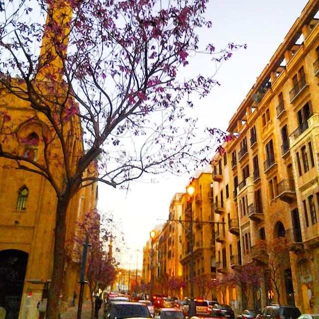 It's Saturday night babyyyy!Live Love Beirut Beirut Beyrouth ...