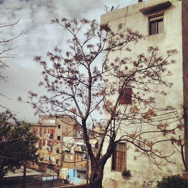 Tripoli....the city of all eras! TripoliLB instaTripoli welovetripoli...