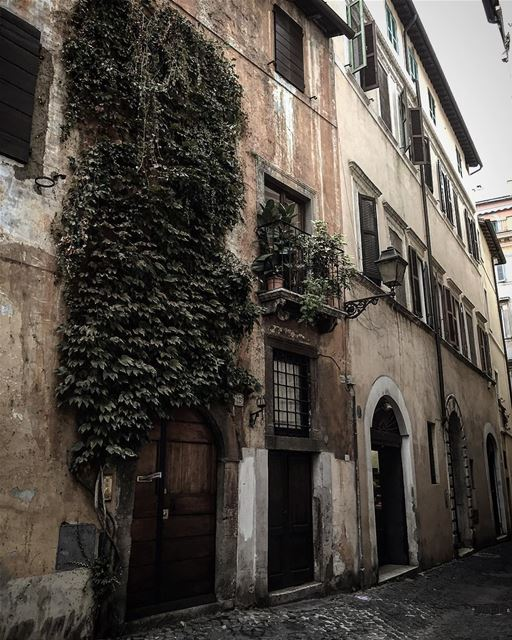 travelphotography travelgram leo love soul mybeirut myquotes ... (Trastevere Roma, Italia)