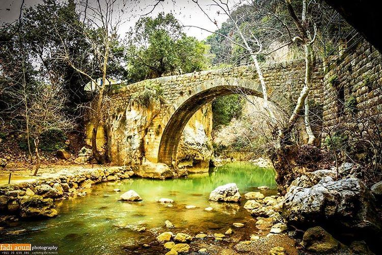 photo fadiaounphotography lebanon nature photoshooting photoinsta ...