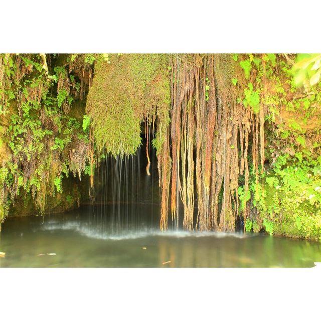 Heaven 🤘🏻... water (Qnat)