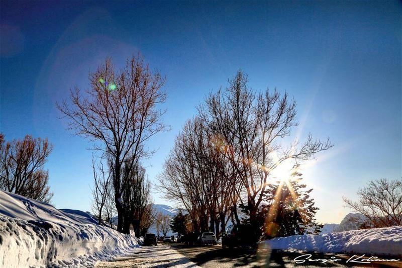 When it was sunny. sergio_koliana_photography meetlebanon mylebanon ...