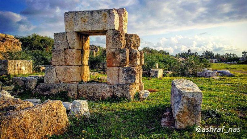 كما ينبت العشب بين مفاصل صخرةوجدنا غريبين معاًو كانت سماء الربيع... تؤلف... (Roman ruins in Tyre)