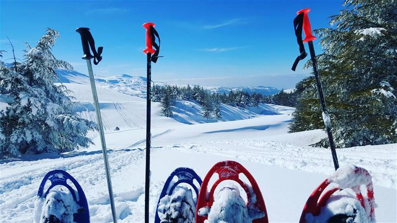 Couples who hike together, stay together snowshoeing snow mountains ...