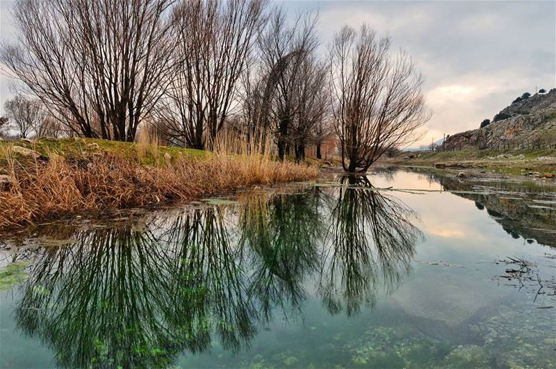 🍁📷.... sunday roadtrip road lagoone lake water reflection trees... (Bekaa Valley)