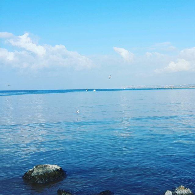 ويظل في القلب حنين الى صور مهما ابتعدنا! livelovelebanon livelovetyre ... (Tyre Beach)