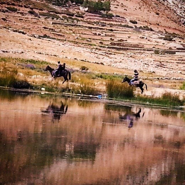 lebanon liban north ouyoun orghoch lake horse riding valleys ...
