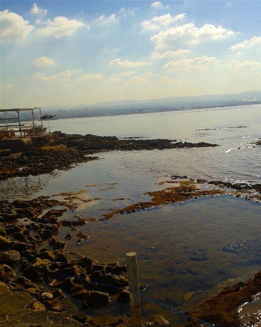 يأخذك البحر إلى عوالمه، حيث الملوحة والقاع البارد...ومع هذا يبقى للبحر سحره