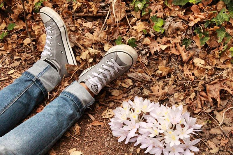 """Never ask a girl to choose between converse and flowers... she'll choose..."