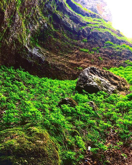 hiking hike hikers hikingsports hikingadventure adventure adventuretime... (Tannourine-Balou3 Bal3a)
