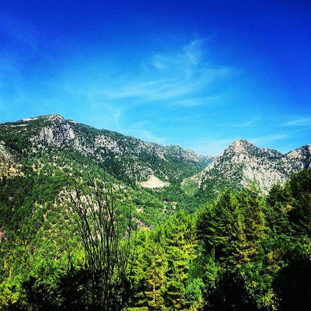 hiking nature hikers naturelovers hike lebanon adventure go extreme... (Janit Artaba)
