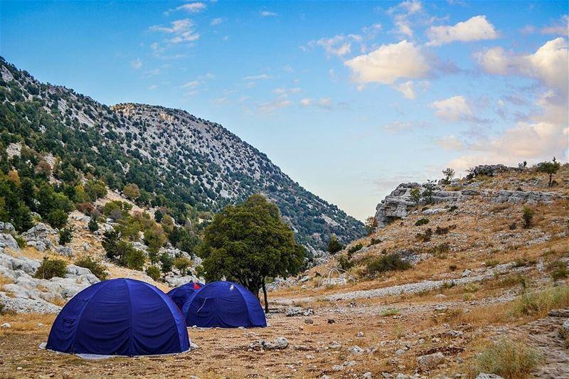 .Camping time. Tannourine,LB. Good evening dear friends! ... (Tannourine, Liban-Nord, Lebanon)