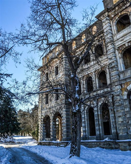 .Sawfar old Abandoned hotel , tree and snow ! Have a nice Sunday dear... (Sawfar, Mont-Liban, Lebanon)