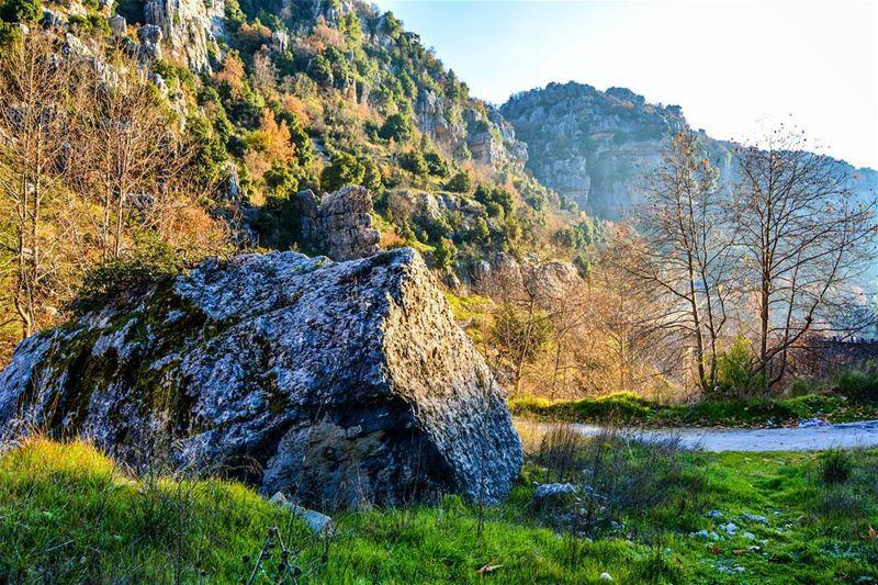Good morning dear friends! Morning at low part of Kfarzebian! The sun and... (Kfardebian)