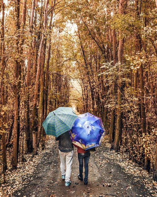 The best days ! Let's take a walk 🍁🍃! It is the Fall!☁ Amazing fall days... (Deïr Taanâyel, Béqaa, Lebanon)