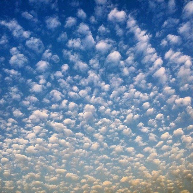 Good morningToday's skyCamera : nikon d3200Beirut, Lebanon...