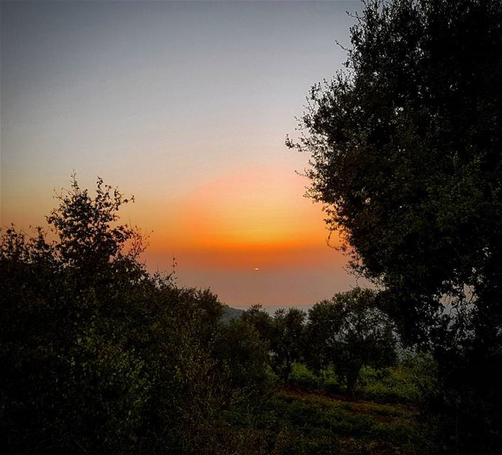 Beautiful Sunset beautiful nature sunset today lebanon landscape ... (Aley, Mont Lebanon)