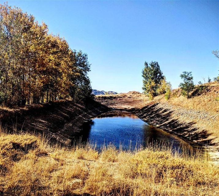 😍 beautiful lake blue trees asymmetric nationalart ...