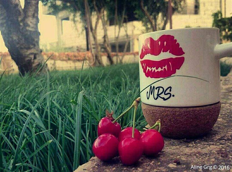Morning Coffee in the Garden ☕🍒🐜🌿 sundaymorning coffee cherry ... (Saghbîne, Béqaa, Lebanon)