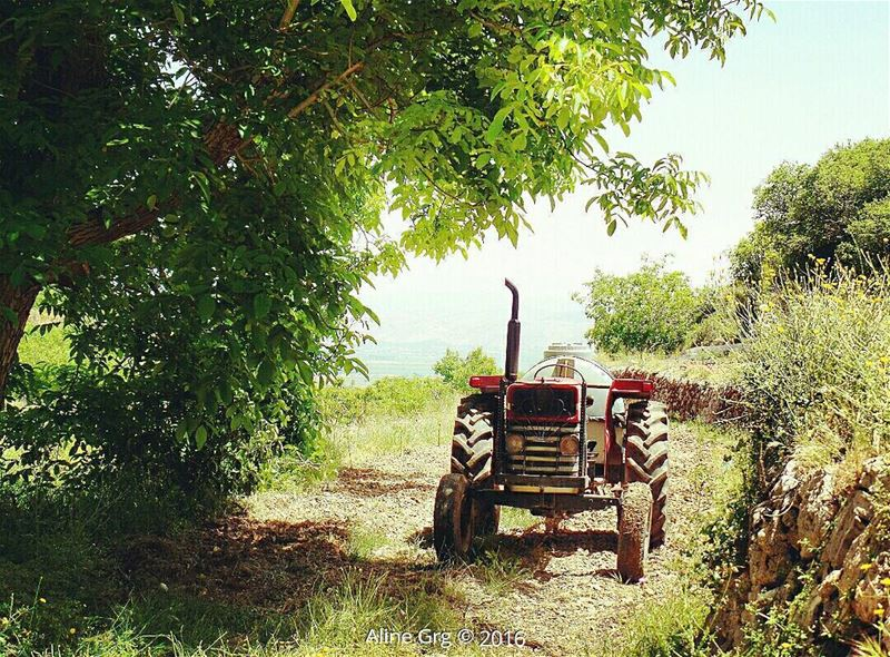 ..تعا نقعد بالفي مش لحدا هالفي redtractor tractor livelovebekaa ... (Aïn Zebdé, Béqaa, Lebanon)