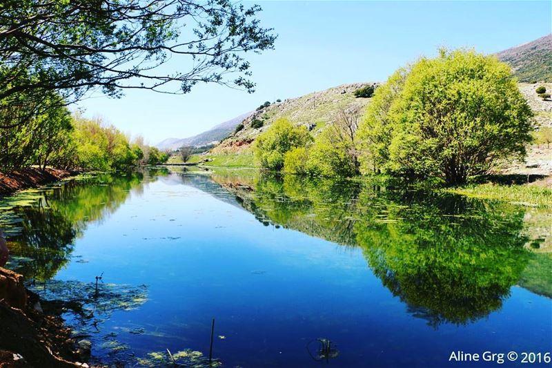 Reflection Perfection 🌳🍃 ammiq ammiqreserve hiking hikingadventures ... (`Ammiq, Béqaa, Lebanon)