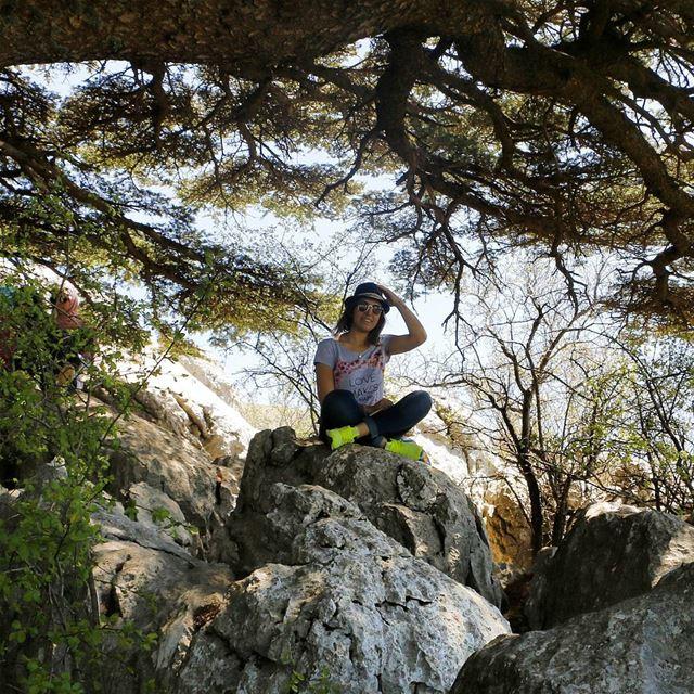 "Surrounded by ""La Martine Cedar"" ❤ tb cedarsofgod hiking hikinggirl ... (Barouk Cedar Forest)"
