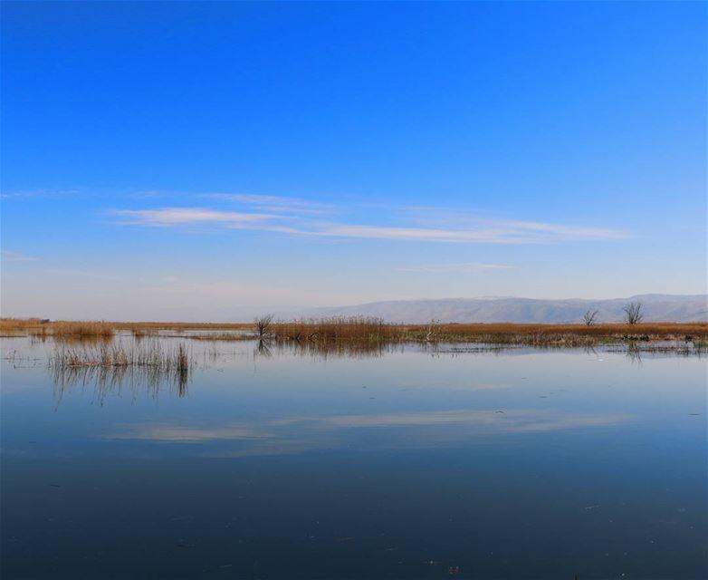 Sometimes it all needs just a single reflection ☁ ammiqreserve westbekaa... (`Ammiq, Béqaa, Lebanon)