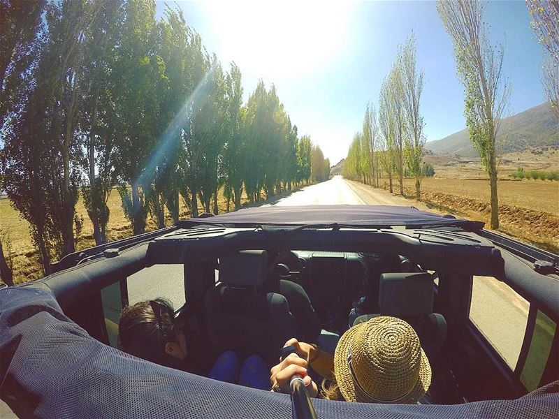 👒 friends roadtrip wrangler adventure westbekaa road trip woods ... (`Ammiq, Béqaa, Lebanon)