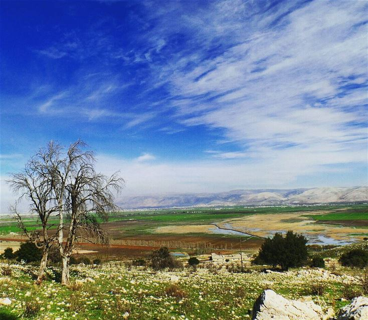 ... هون السما قريبة ammiqreserve ammiq westbekaa lebanon_hdr ... (`Ammiq, Béqaa, Lebanon)