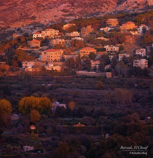 A cozy autumn sunset over Barouk, el Chouf, Lebanon ----------------------- (Bâroûk, Mont-Liban, Lebanon)
