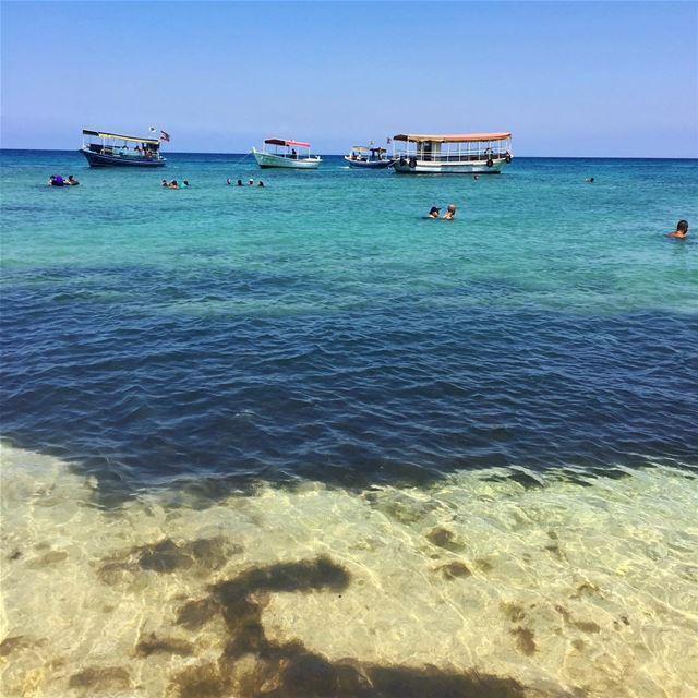 •Palm Island• Philintravel LiveLoveLebanon HuntgramLebanon ... (جزيرة النخل)